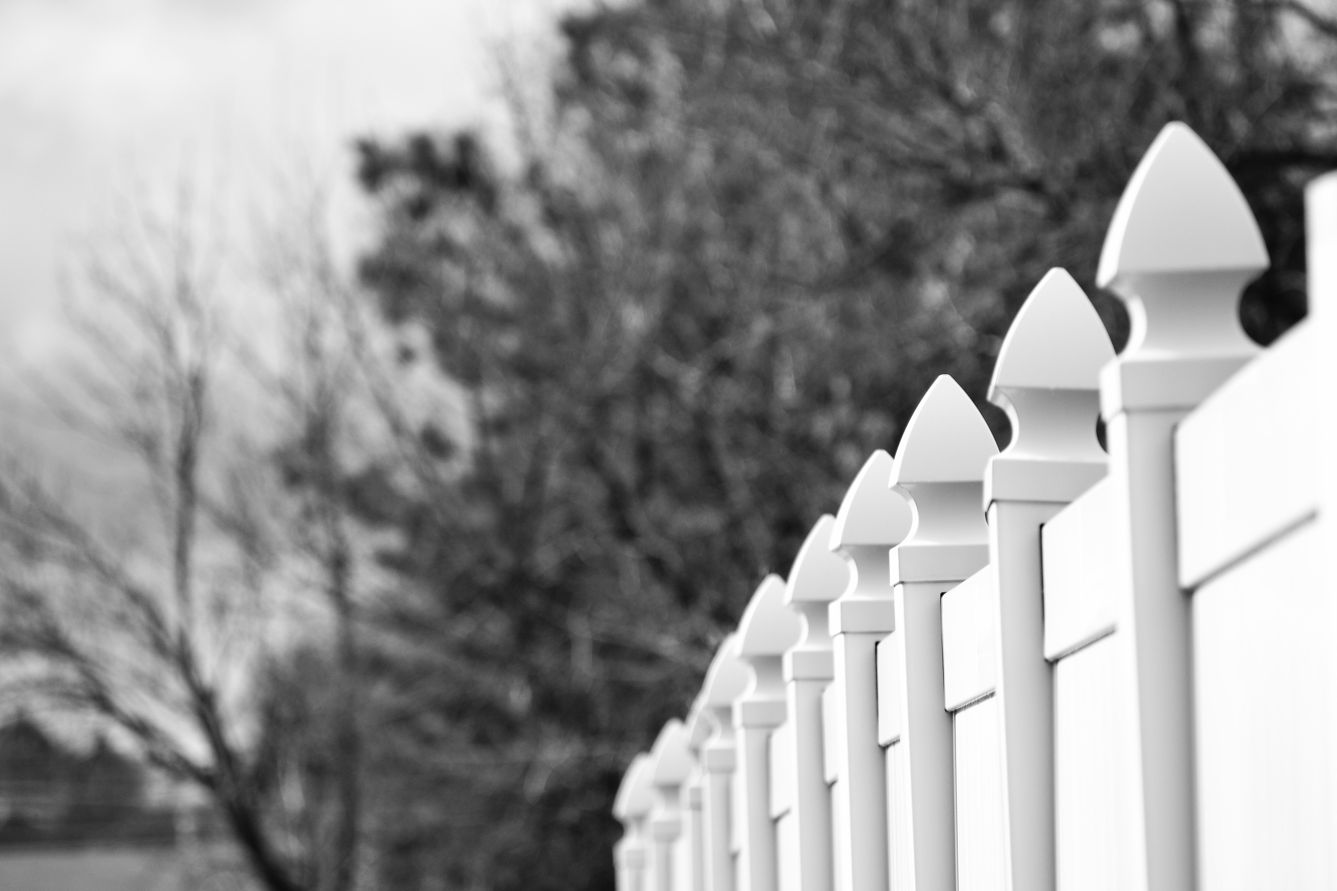 Choosing Perfect Fence for your home