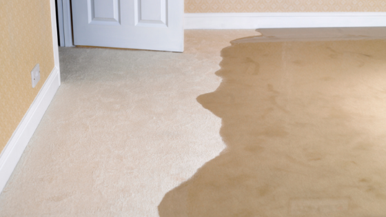 Home Insurance and Flood Insurance: Do You Know the Difference?